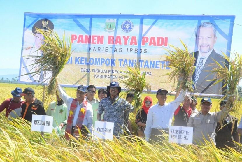 Rektor IPB Herry Suhardiyanto menghadiri panen raya padi IPB 3S di Kabupaten Pinrang, Sulawesi Selatan, Sabtu (9/9).