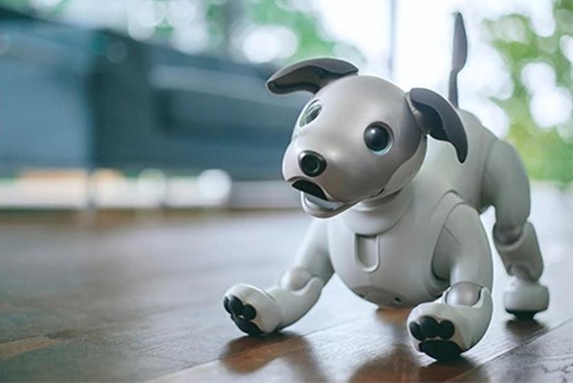 Robot Aibo generasi terbaru buatan Sony