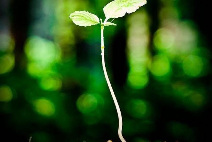 Saat hidup di dunia inilah, kita sebaiknya terus-menerus berprasangka baik kepada Allah