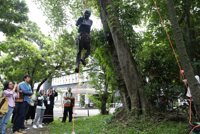 Ilmuwan Dunia Peringati Hari Pohon di IPB