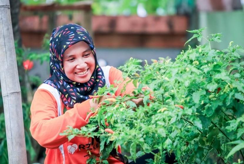 Lestarikan Lingkungan Lewat Kampung Sayur di Pohsarang