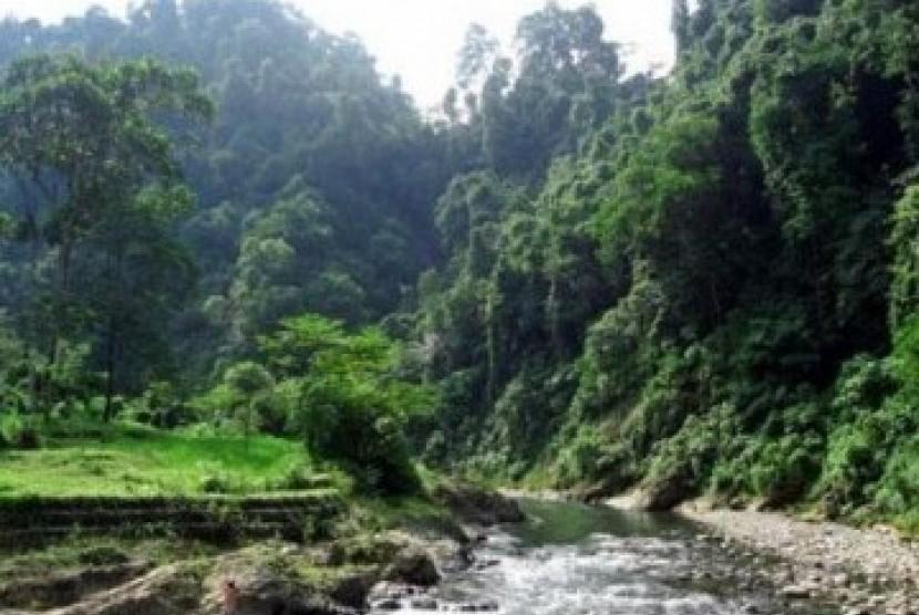 Salah satu sudut Taman Nasional Gunung Leuser, di Provinsi Sumatera Utara.
