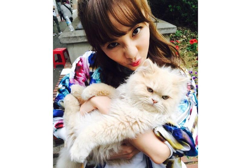 Sandara Park dan kucing.