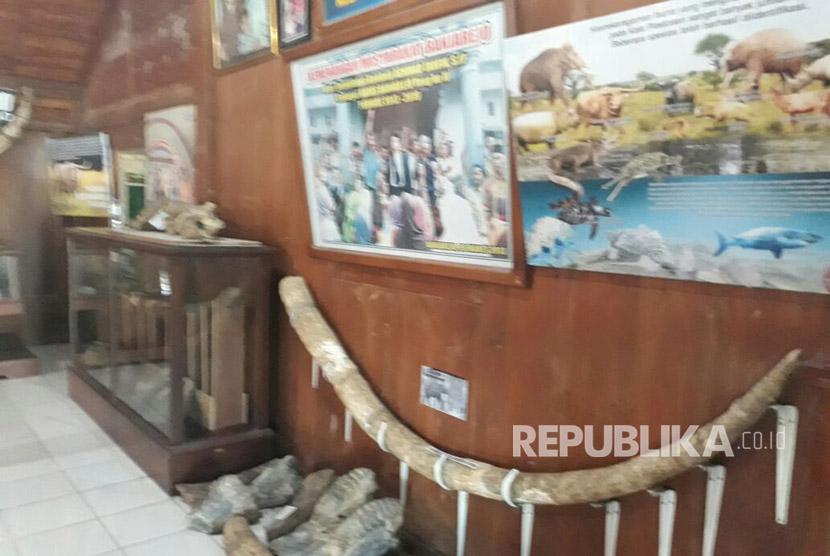 Sejumlah fosil dan benda peninggalan masa Hindu Buddha tersimpan rapi di museum desa atau rumah kepala desa Banjarejo Grobogan.