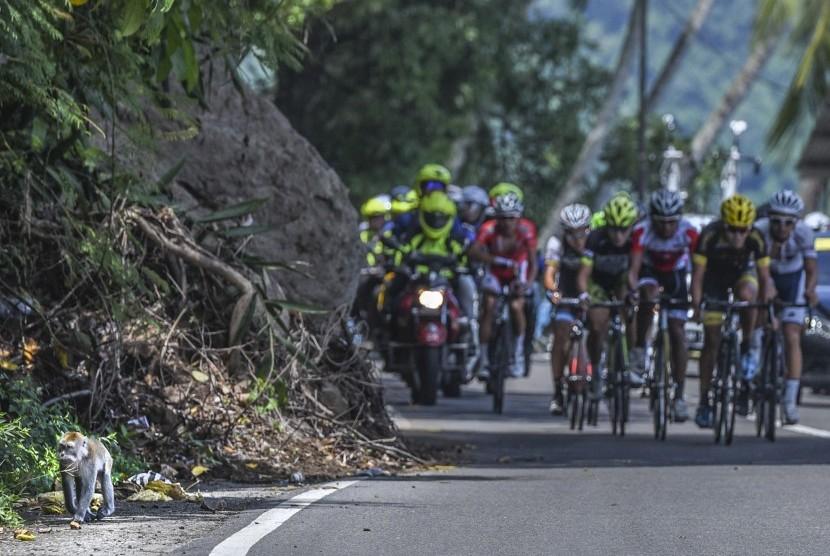 Sejumlah pebalap sepeda beradu kecepatan pada etape kelima Tour de Singkarak 2016 di Pesisir Selatan, Sumatera Barat, Rabu (10/8).