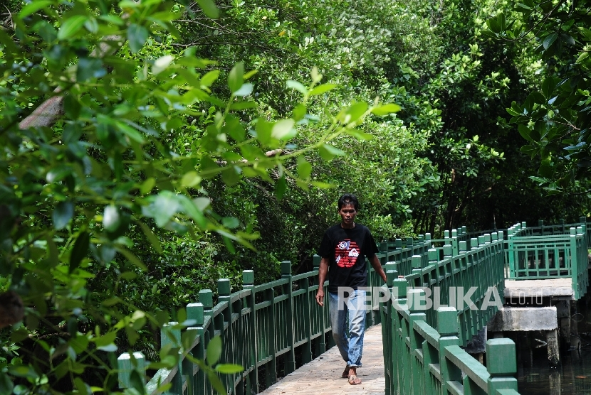 Seorang warga melintas di kawasan hutan mangrove Angke Kapuk, Jakarta Utara.