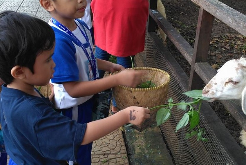 Siswa TK Bakti Mulya 400 mengunjungi Kuntum Farm Field, Bogor.