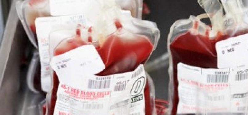 Stok Kantong Darah (Ilustrasi)