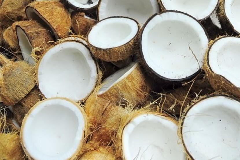 Coconut. North Sumatra exports coconut flour mainly to Italy.