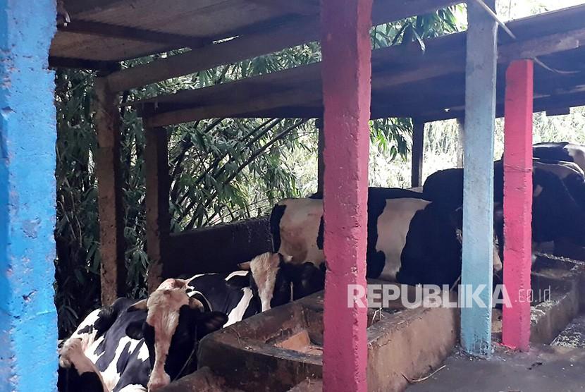 Universitas Brawijaya  (UB) meresmikan kampung biogas di Sanan, Kota Malang, Selasa  (13/2).
