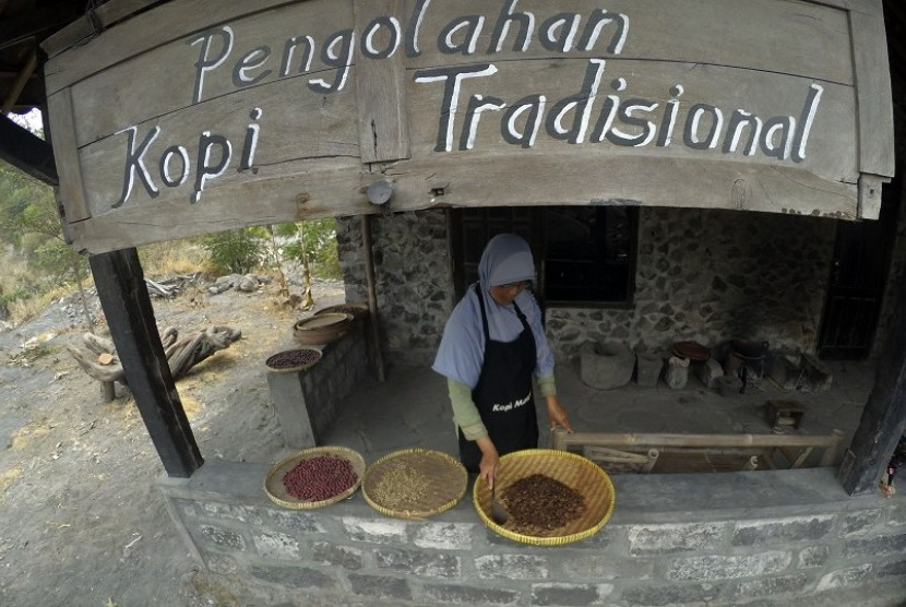 Usaha pengolahan kopi tradisional dari lereng Gunung Merapi, Yogyakarta.