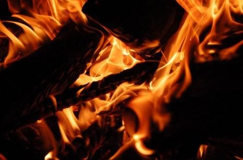 Satu Desa di Jambi Hangus Terbakar