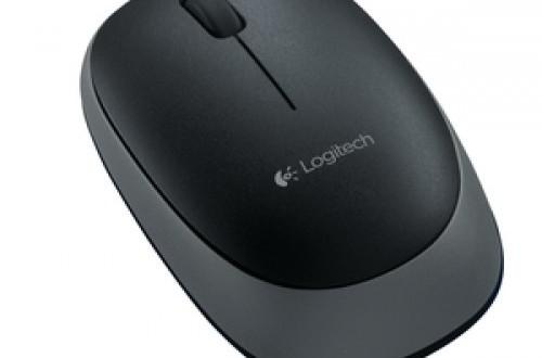 Logitech Wireless Mouse M165