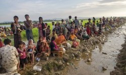 Thousands of Rohingya Muslims tried to flee from Myanmar to Bangladesh via the border in Palong Khali, on Tuesday (October 17).
