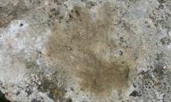 Cetakan tangan yang ditemukan di  sekitar candi Chusang di Tibet.