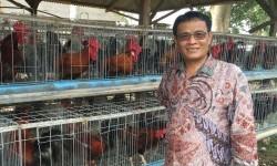 Direktur Jenderal Peternakan dan Kesehatan Hewan (Dirjen PKH) Kementerian Pertanian, I Ketut Diarmita.