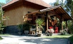 Homestay in Bali