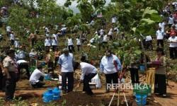 Jokowi melakukan penanaman pohon dalam Hari Menanam Pohon Indonesia (Ilustrasi)