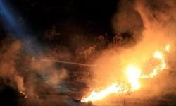 Kebakaran hutan (ilustrasi).