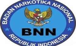 logo BNN