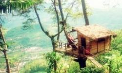Omah kayu di Batu, Malang.