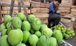 Pedagang menata buah lokal di Pasar Induk Kramat Jati, Jakarta, Jumat (29/8).(Prayogi/Republika)