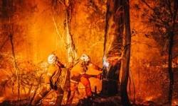 Pemadam kebakaran di pedesaan Australia harus bekerja begitu dekat dengan api.