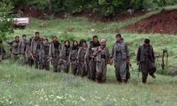 Pendukung Partai Pekerja Kurdistan (PKK).