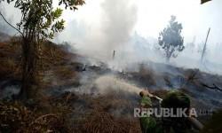 Petugas berusaha memadamkan kebakaran lahan gambut di Desa Rimbo Panjang, Kabupaten Kampar, Riau