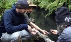 Petugas EPA dan penjaga hutan memeriksa Sungai Wollangambe setelah dinding waduk ambrol di tambang Clarence Colliery.