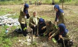 PP Muhammadiyah mendirikan Majelis Lingkungan Hidup (MLH)