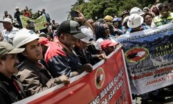 Hundred of PT Freeport Indonesia employees staged a rally in front of Mimika's reagent office, Papua, Friday  (Feb 17).