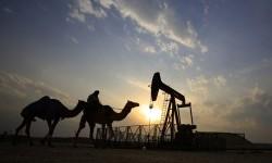 Seorang pria naik unta melintasi ladang minyak dikawasan Sakhir, Bahrain. Negara OPEC telah sepakat bahwa mereka harus mengurangi produksi untuk membantu meningkatkan harga minyak dunia selama pertemuan di Aljazair.