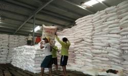 Stok urea bersubsidi di gudang lini II PT Pupuk Kujang Cikampek, cukup aman untuk memenuhi kebutuhan petani selama musim rendeng, Jumat (20/1).