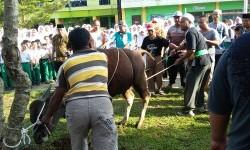 Suasana pemotongan hewan kurban di Madrasah Al-Hidayah Depok.