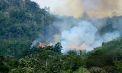 Titik panas kebakaran lahan di Sumatra (ilustrasi).