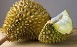 Durian. Ilustrasi