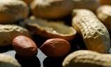 kacang-diyakini peneliti bermanfaat tekan kolesterol dan menunjang kinerja jantung.