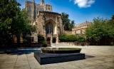Kampus Yale