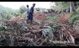 Lokasi bencana longsor di Desa Mlati, Arjosari, Pacitan, Jawa Timur, Jumat (1/12).