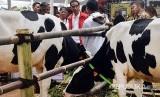 Presiden Joko Widodo (tengah) didampingi Menteri Pertanian Amran Sulaiman (kanan) dan Menteri Pekerjaan Umum dan Perumahan Rakyat (PUPR) Basuki Hadimuljono (kedua kiri) berbincang dengan peternak sapi saat menghadiri Jambore Peternakan Nasional 2017 di Buperta Cibubur, Jakarta, Minggu (24/9).