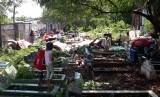 Sejumlah warga korban penggusuran lahan di Kampung Palem Nuri, Kelurahan Panunggangan Barat, Kota Tangerang harus bermalam di lahan kuburan, Kamis (7/12).