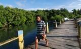 Seorang warga berjalan di atas jembatan yang menjadi kawasan pelestarian hutan mangrove di Pulau Bangka, Minahasa Utara, Sulawesi Utara, Kamis (31/1)