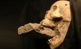 Tengkorak 'Vampir' ditemukan di kuburan masal dengan batu menyumpal rahangnya.