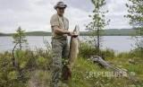 Vladimir Putin berpose dengan ikan pancingannya di wilayah Krasnoyarsk Distrik Siberian.