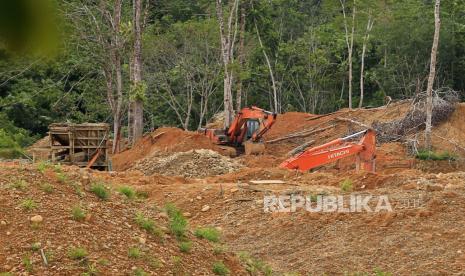 Enam Penambang Timah Ilegal Tertimbun Longsor di Bangka thumbnail