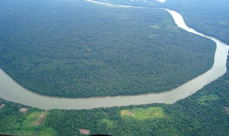 Brasil Butuh Bantuan Rp145 Triliun untuk Netralitas Karbon