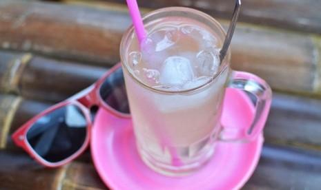 Manfaat Minum Air Kelapa Di Pagi Hari Republika Online