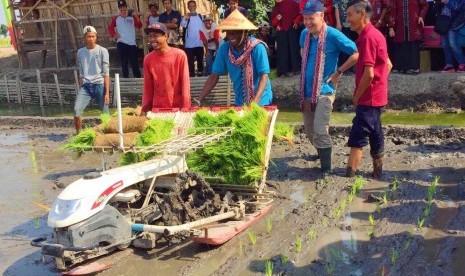 Delapan Negara Anggota FAO Pelajari Pertanian Indonesia