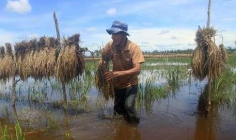 Korban Banjir di Aceh Singkil 3.442